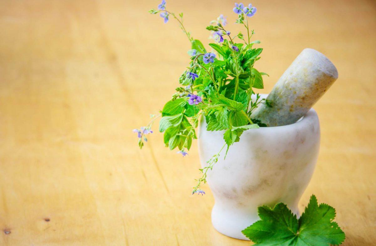 mortar-and-medical-herbs-1200x786.jpg