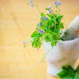 mortar-and-medical-herbs